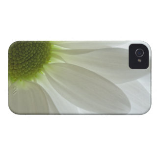 White Daisy Petals iPhone 4 Case-Mate Barely There iPhone 4 Case
