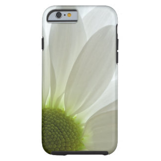White Daisy Petals iPhone 6 iPhone 6 Case