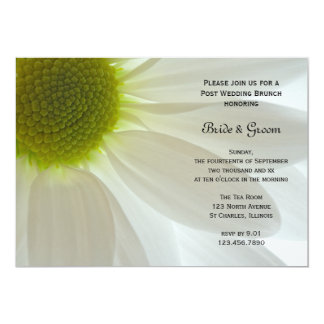 White Daisy Petals Post Wedding Brunch Card