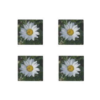 White Daisy Stone Magnet
