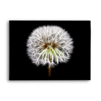 White Dandelion Flower Plant Envelope