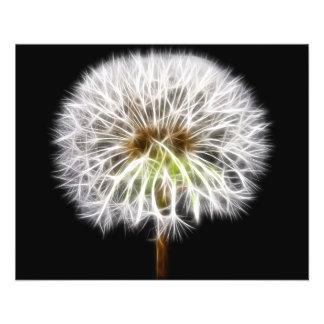 White Dandelion Flower Plant Flyer