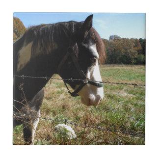 White de Brown caballo pintado flor del cordón Tejas Ceramicas