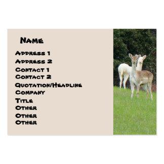 White Deer Business Card