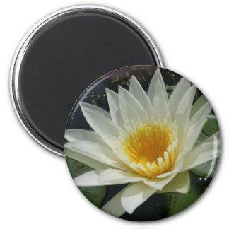 White Delight 2 Inch Round Magnet