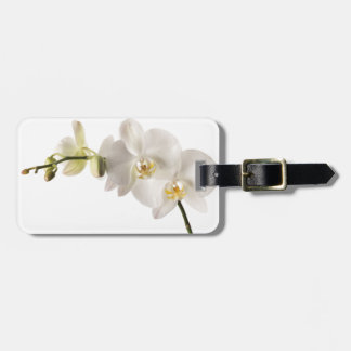 White Dendrobium Orchid Flower Spray Floral Blank Bag Tag