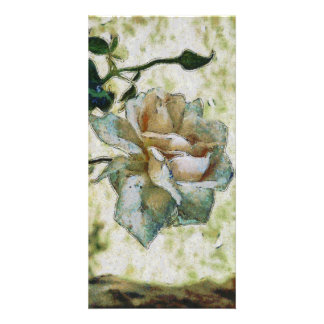 White discolored rose card