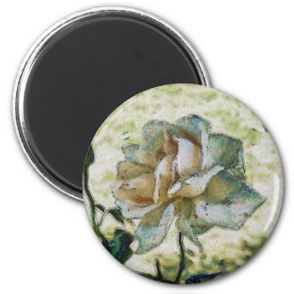 White discolored rose magnet