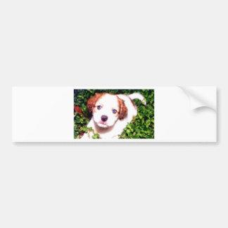 White Dog Bumper Stickers