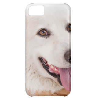 WHITE DOG HAPPY PETS FURRY FRIENDS ANIMALS TAME LO iPhone 5C COVER