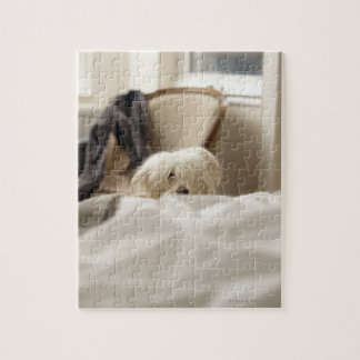 White dog hiding behind bed (differential focus) jigsaw puzzle