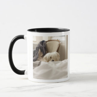 White dog hiding behind bed (differential focus) mug