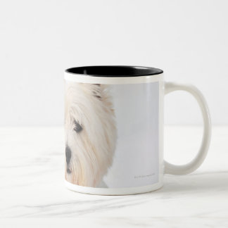 White dog in clothes in the snow. Two-Tone coffee mug