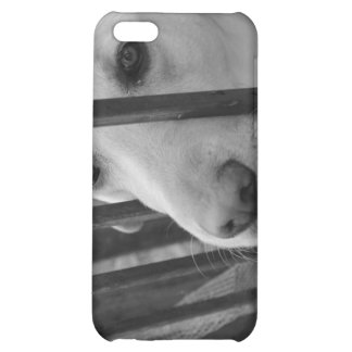 White Dog iPhone template Cover For iPhone 5C