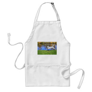 White dog jumping on grass apron