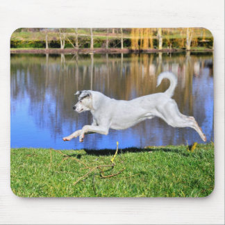 White dog jumping on grass mouse pad