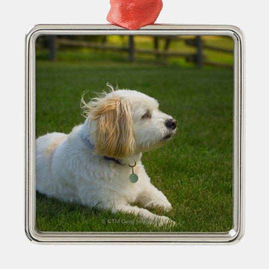White dog metal ornament