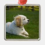 White dog ornaments