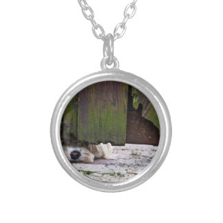 White Dog Peeking Under Fence Silver Plated Necklace