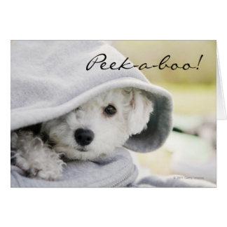 White dog wearing a hood of shirt greeting card