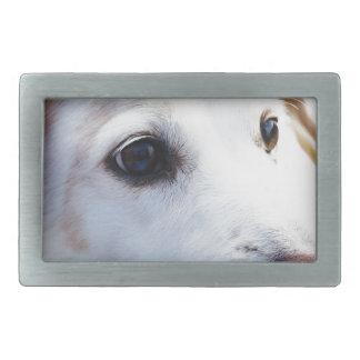 White Dog with Faithful Eyes, Animal Pets Dogs BFF Belt Buckle