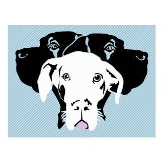 White Dogge Postcard