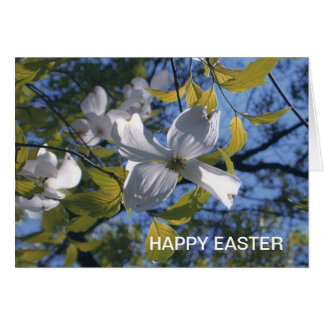 White Dogwood Blossom HAPPY EASTER Greeting Card