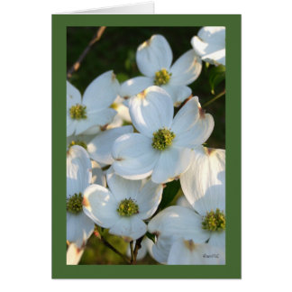 White Dogwood (Raw) Stationery Note Card