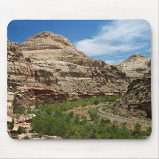 White Domes Mouse Pad