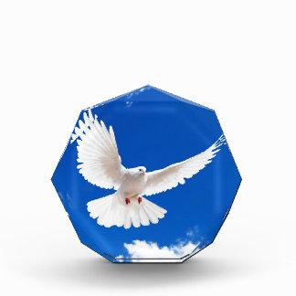 White Dove Bird Peace Love Flying Sky Acrylic Award