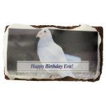white dove, white pigeon, bird, birds, white bird,