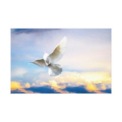 White dove in flight canvas prints