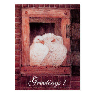 WHITE DOVES AT THE WINDOW antique red pink Postcard