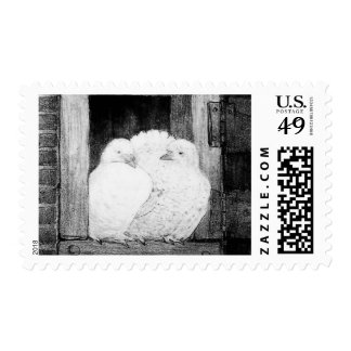 WHITE DOVES AT THE WINDOW, black and white Postage