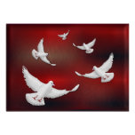 WHITE DOVES OF PEACE POSTER