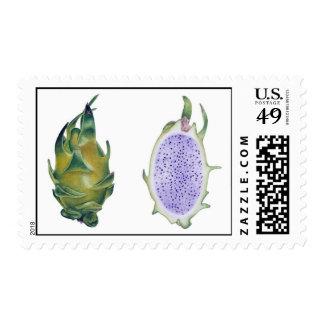 White Dragon Fruit Stamps