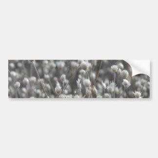 White Dried WildFlowers Bumper Sticker