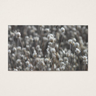 White Dried WildFlowers Business Card