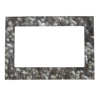 White Dried WildFlowers Magnetic Frame