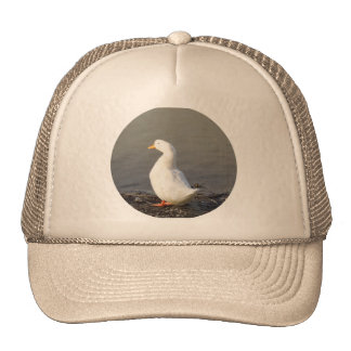 White Duck at Edge of Lake Trucker Hat