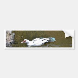 White Duck Bumper Sticker