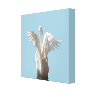 White Duck Flapping Wings on Water Vector Canvas Print