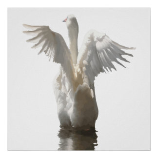 White Duck Flapping Wings on Water Vector Poster