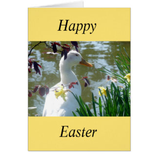 White Duck In Daffodils Easter Card