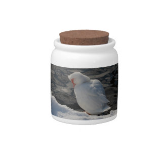 white duck in the snow candy jar