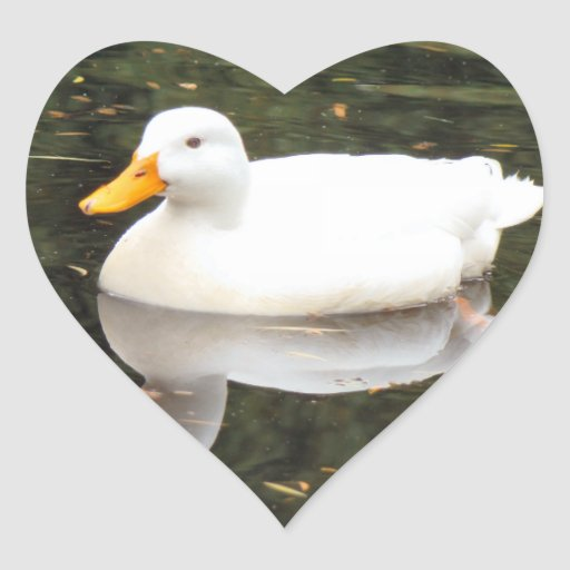 White Duck Stickers