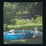"""White Ducks and a Pool Bandana<br><div class=""""desc"""">A photograph of a group of adorable white ducks enjoy some time in and near a kiddie pool on a bandana</div>"""