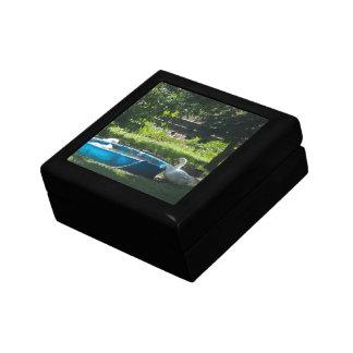 White Ducks and a Pool giftbox Trinket Box