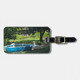 White Ducks and a Pool Luggage Tag