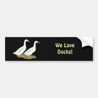 White Ducks Bumper Sticker